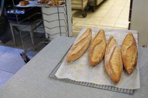 bakery-baking oven